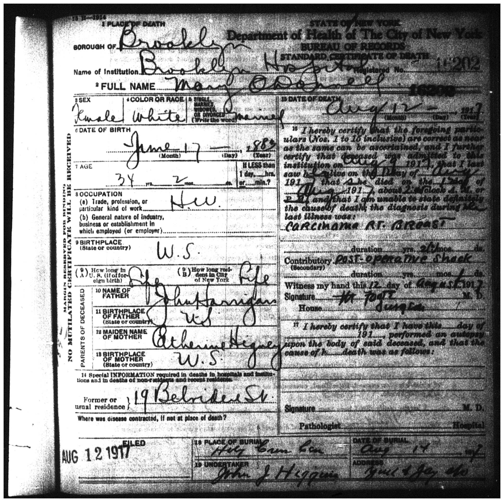 Mary Harrigan Odonnell Death Certificate Irish History And Genealogy